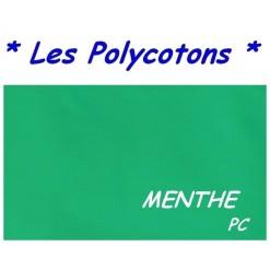 DRAP HOUSSE LONGUEUR  220 cm Bonnet 25 cm / 11 DIMENSIONS au choix / MENTHE PC