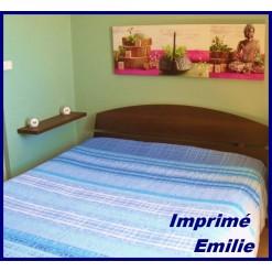 TOP PROMO / LA TAIE OREILLER 30x50 cm  / EMILIE